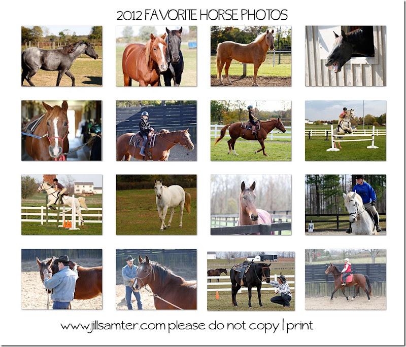 2012horsesweb
