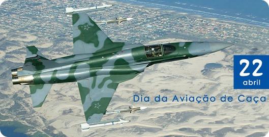 fuerza aerea brasileña