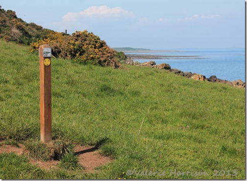 59-Mull-of-Galloway-Trail