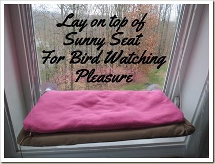 Sunny-Seat-Cat-Cushion (10)