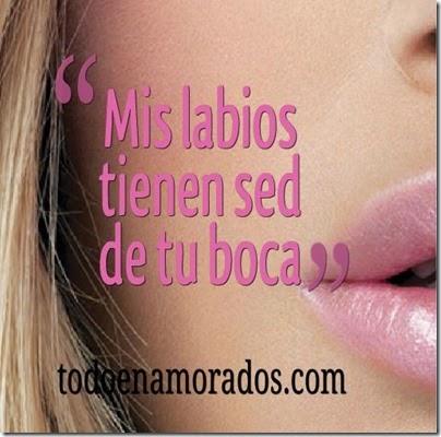 mis labios tienen se de tu boca