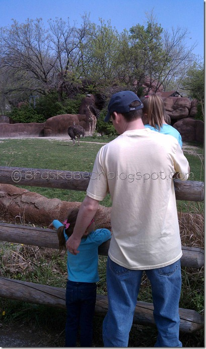 daddygirlsgiraffe