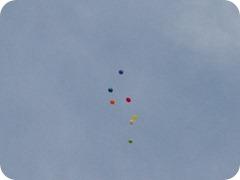 Boise Balloons 2012 (7)