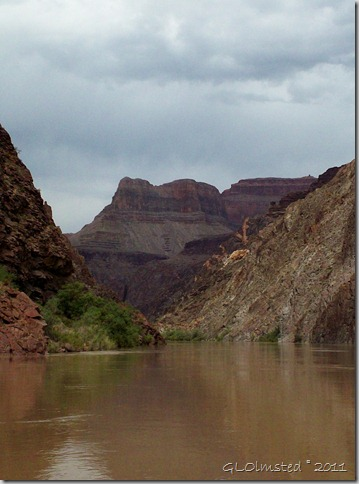 09 ~RM99.5 Colorado River GRCA NP AZ (758x1024)