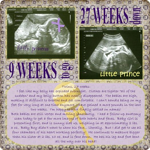 Twins 27 weeks jpg