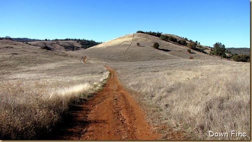 Magnolia ranch hike_050