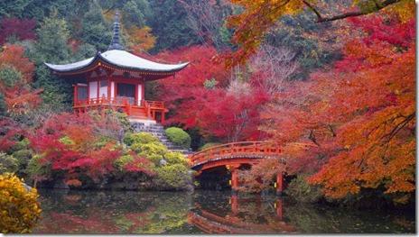 autumn-colors-fall-009