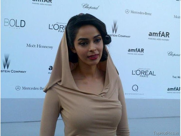Mallika Sherawat Latest Photos in Hot Dress 4