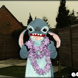 Shoot: stitch