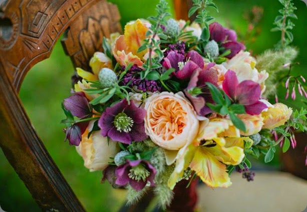 hellebore 261730_10151430676051657_1861944434_n Shannon Morse  Photographer  and botanica floral & event design