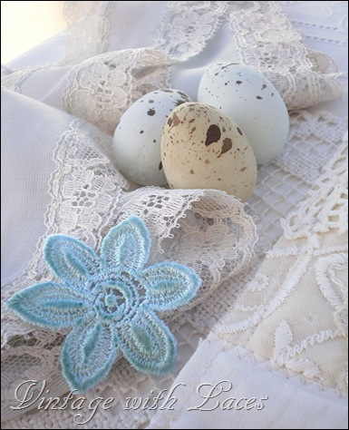 eggs and lace