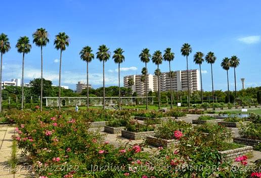 80 - Glória Ishizaka - Jardim Botânico Nagai - Osaka