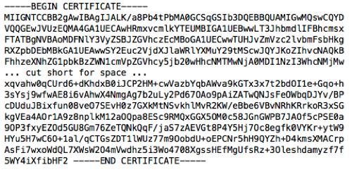 CA Certificate Contents
