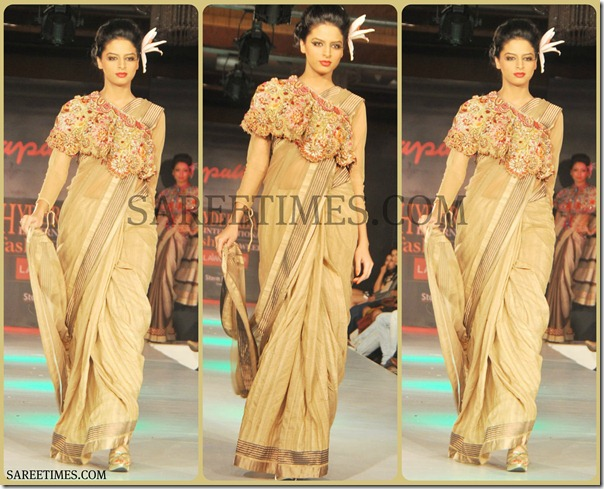 Tan_Designer_Saree
