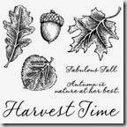 C1504_fall harvest stamp set