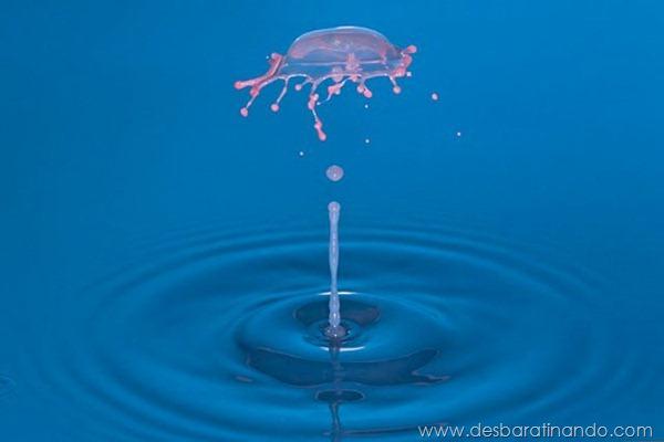 liquid-drop-art-gotas-caindo-foto-velocidade-hora-certa-desbaratinando (113)