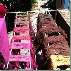 Botanical dyed yarns