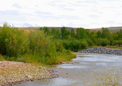 2. river-kab