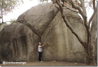 Pedra X