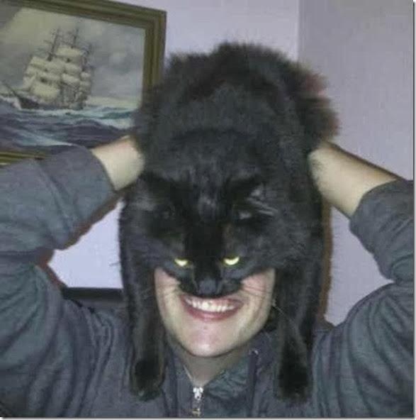 catman-meme-face-18