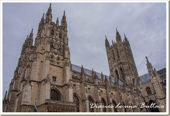 Canterbury-44