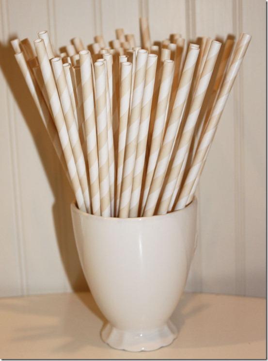 E-Straw-Ivory-2-Large