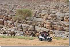 Rally Marokko 2012 E4-5 04