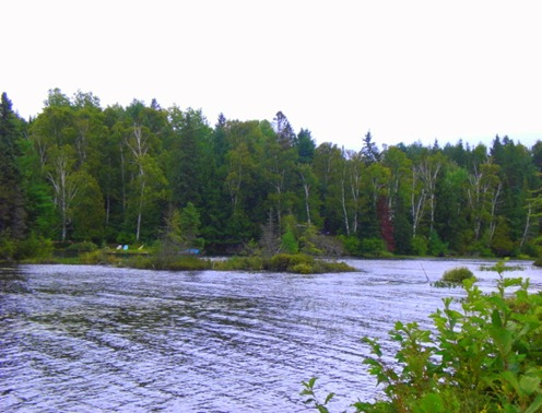 Pond 2011
