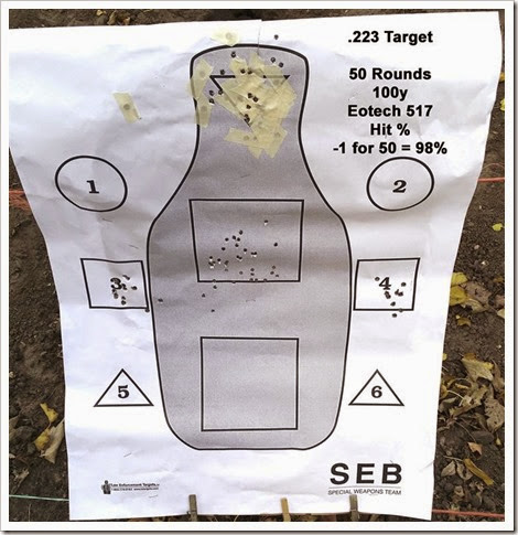 223 Target (Medium)