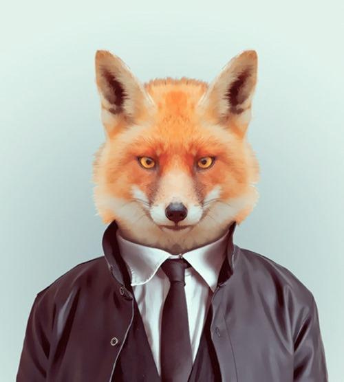 animais roupas humanas - raposa