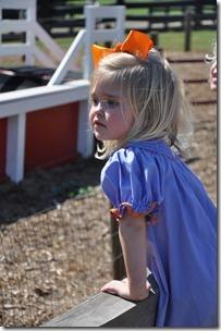 southern belle farm 100611 (48)
