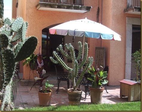 garden 031