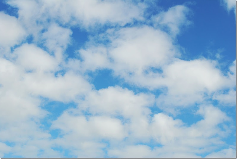 blue-skys