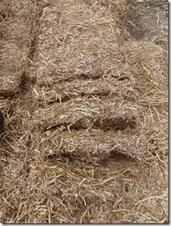 Straw bales break apart naturally along the length of the bale into 'straw bricks' about 10 cms in width.