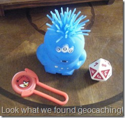 Geocaching brings geography to life by building real life experiences that kids will remember.  Raki's Rad Resources