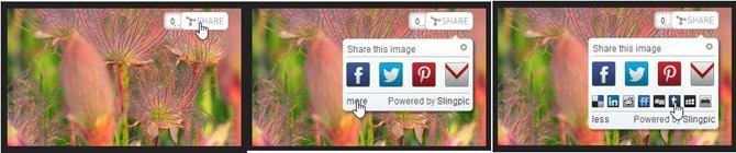 slingpic-bottone-immagini
