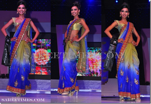Designer_Dual_Color_Saree