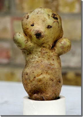 osito patata