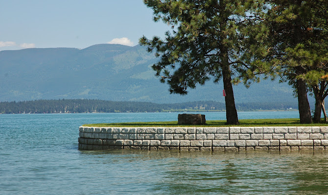 Flathead Lake Project