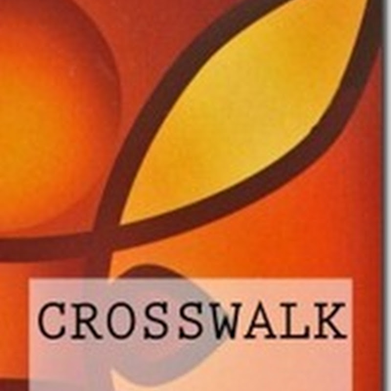 Orangeberry Book of the Day - Crosswalk - Cara St. Louis