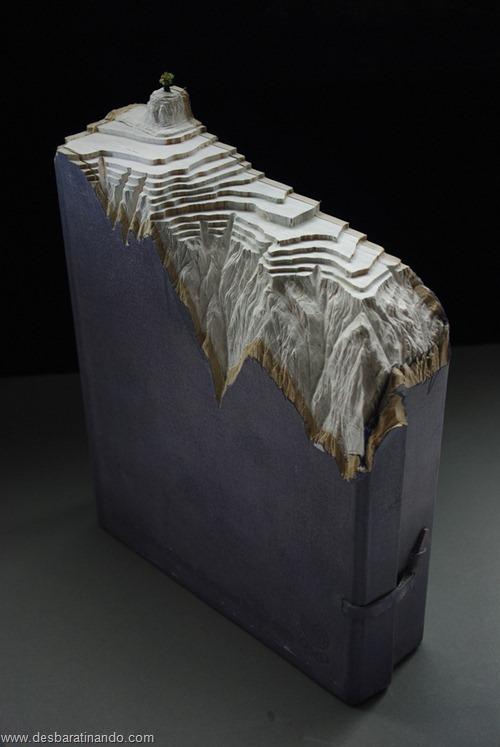 livros montanhas entalhados esculpidos desbaratinando (4)
