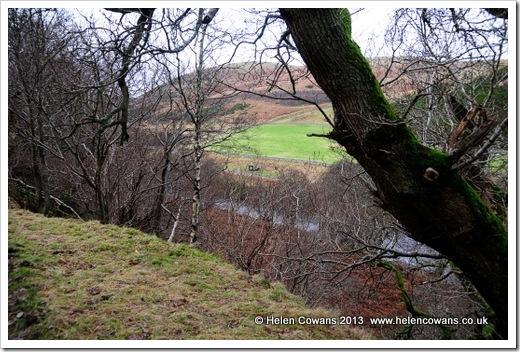 Harthope Valley  walk 7