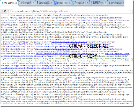 copy page sorce code
