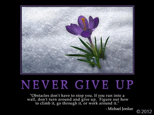jangan menyerah. Hadapi rintangan yang ada. Semakin susah rintangan yang anda hadapi, maka semakin besar pula keberhasilan yang anda dapat. Never give up!