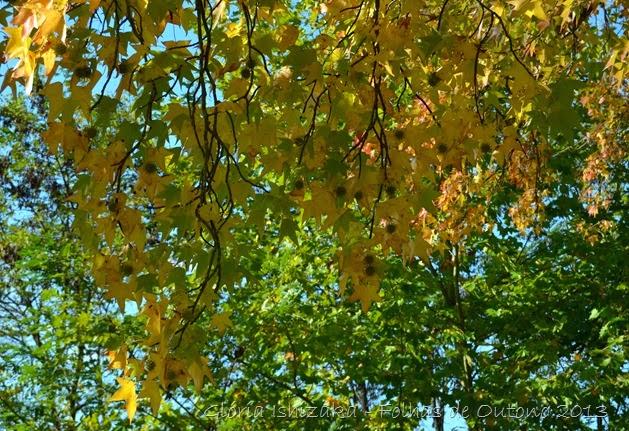 Glória Ishizaka - Outono 2013 - 51