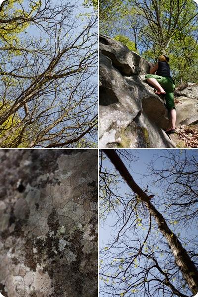 boulder06