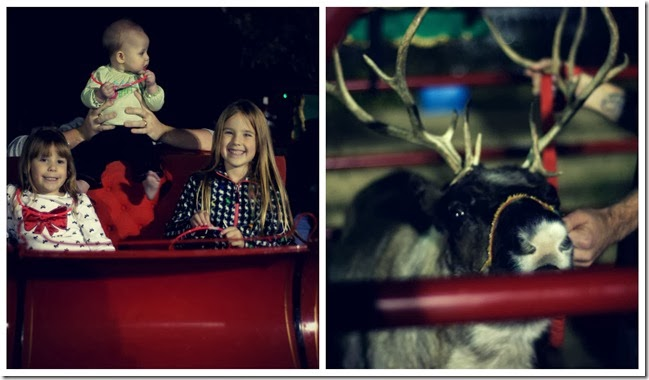 Sleds and Reindeer