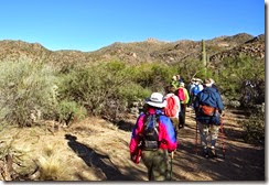 Wild Burro Hike Jan 21 029