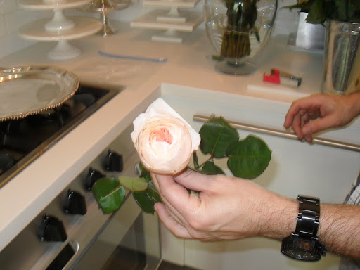 Here is a Juliet rose -- it has a form of a garden rose and has very dense layers inside.