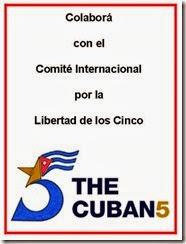 Comite Internacional 5 - 2013